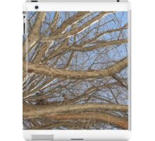 Blue Skies 008 iPad Case/Skin