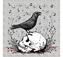 Raven Sings Song of Death on Skull Illustration Photographic Print