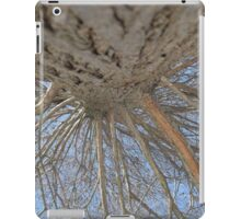 Blue Skies 009 iPad Case/Skin