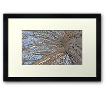 Blue Skies 009 Framed Print