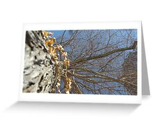 Blue Skies 010 Greeting Card