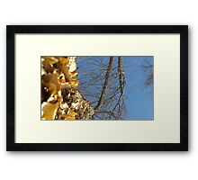 Blue Skies 011 Framed Print