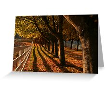 Fall Fence Line Greeting Card