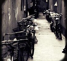 OLD SHANGHAI - Bike Lane by Vanessa Sam
