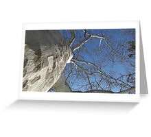 Blue Skies 019 Greeting Card