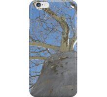 Blue Skies 020 iPhone Case/Skin