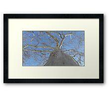 Blue Skies 020 Framed Print