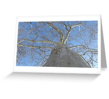 Blue Skies 020 Greeting Card