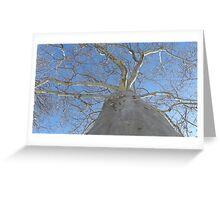Blue Skies 020 Greeting Card
