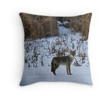 The Coyote Project, Act II, Scene ii Throw Pillow