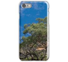 Grove Bluff iPhone Case/Skin