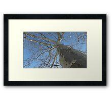 Blue Skies 021 Framed Print
