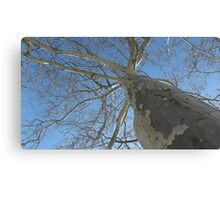 Blue Skies 021 Canvas Print