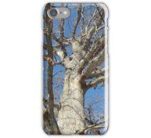 Blue Skies 022 iPhone Case/Skin