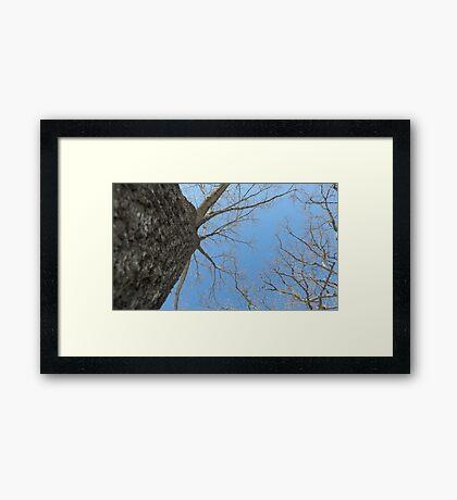 Blue Skies 023 Framed Print