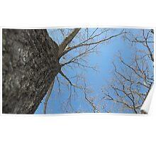 Blue Skies 023 Poster