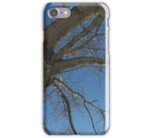 Blue Skies 024 iPhone Case/Skin