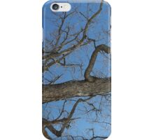 Blue Skies 025 iPhone Case/Skin