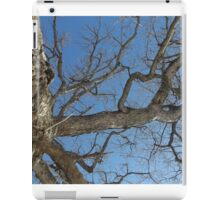 Blue Skies 025 iPad Case/Skin