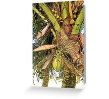 Coconut flavor Greeting Card