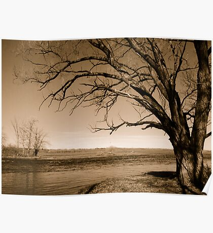 The Ottawa River in Late Autumn Poster