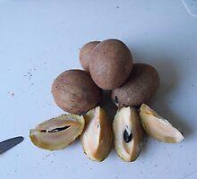 Sapodilla Fruit by 4spotmore