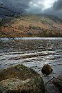 Thirlmere Lake  by David Robinson