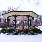 winter in ruskin park by marxbrothers