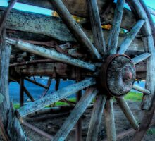 Wheel Of Fortune by Steven Maynard