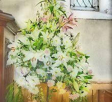 Window Display by Catherine Hamilton-Veal  ©