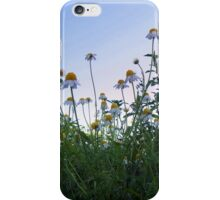 Reaching for the sky iPhone Case/Skin