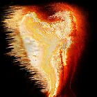 Heart in flames by Heinz