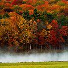 Autumn Mist by BigD