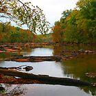 River Walking by nightsblood