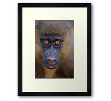 The Wonderful Drill Framed Print