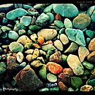 The Joy of Stones by Kathleen Daley