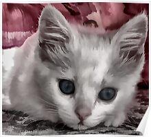 A Kitten Named Raiden Poster