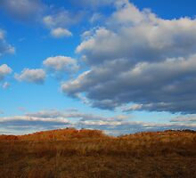 Autumn Horizons by Jason Vickers