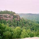 cliff by bonniedawn