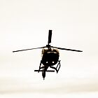 Eurocopter EC130 B4 EI-LNX by highonsnow