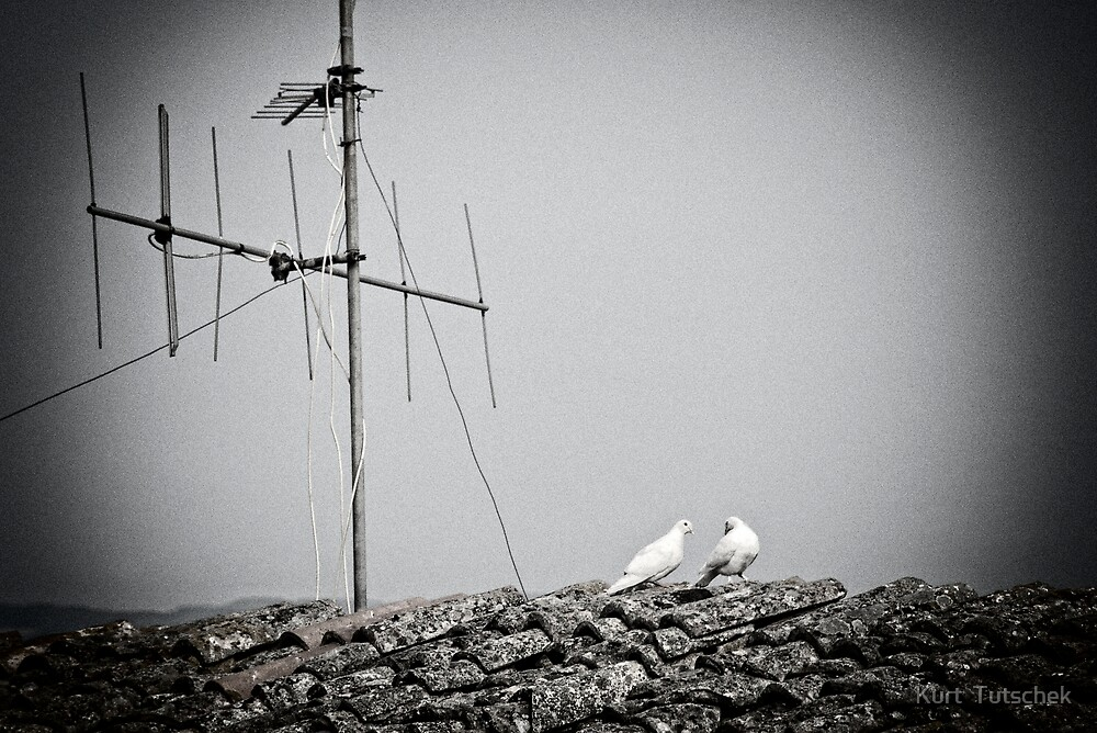 Small talk on the rooftop by Kurt  Tutschek