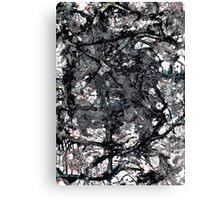 onyx lair Canvas Print