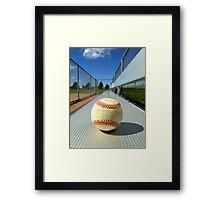 Play Ball! Framed Print