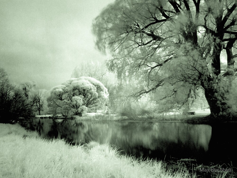 Infra-Red Springtime in Ottawa, No. 1 by Max Buchheit