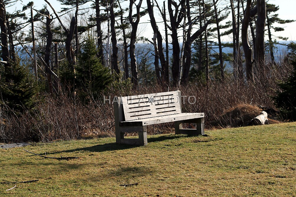 Park Bench by HALIFAXPHOTO