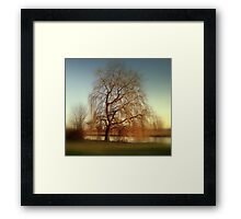 Weeping...... Framed Print