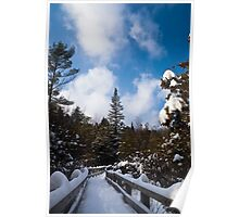 Boardwalk in Heavy Snow at Crawford Lake Poster