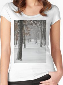 Snowy day in New York City  Women's Fitted Scoop T-Shirt