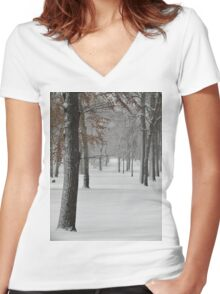 Snowy day in New York City  Women's Fitted V-Neck T-Shirt