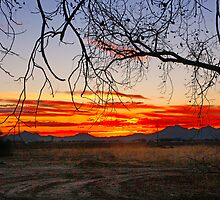 Marana Sunset by Marvin Collins